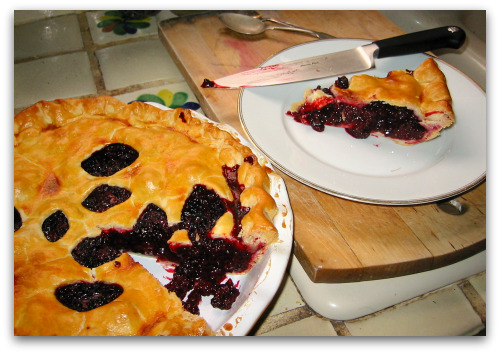 blackberry pie and slice About Tom and Tall Clover Farm