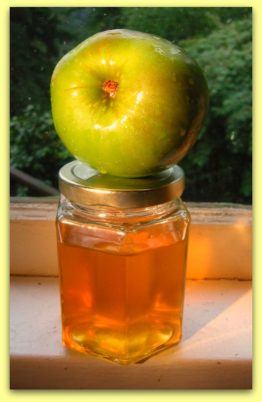 2008 09 20 blog jelly Apple Jelly Recipe: Flavorful Chameleon