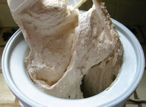 homemade rhubarb ice cream Rhubarb Vanilla Ice Cream: You Scream, I Scream...