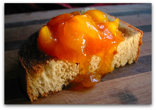 apricot jam on toast Apricot Preserves Recipe: Jam Making as Alchemy
