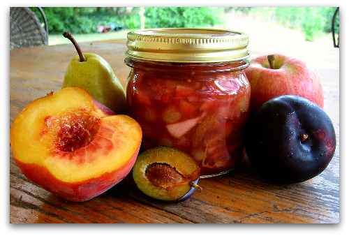 jar chutney fresh fruit Chutney Love: Recipe for Preserving Summer
