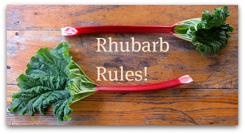 Rhubarb Rules Tall Clover Farm Heritage Recipe: Rhubarb Berry Cake Pudding