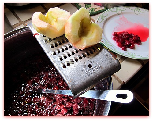 apple cherry jam grater Preserving Tips: How to Thicken Jam