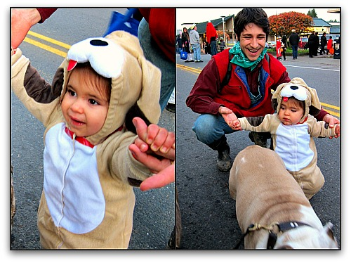 vashon Halloween puppies Vashon Halloween: Ghouls Just Wanna Have Fun