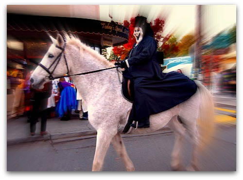 vashon halloween horse Vashon Halloween: Ghouls Just Wanna Have Fun