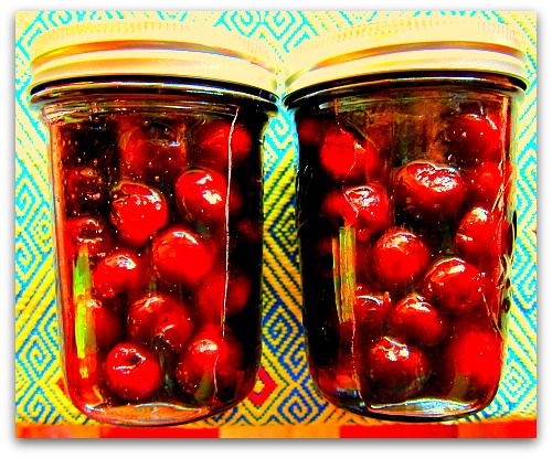 pickled sweet cherries Pickled Sweet Cherries...Who Would Have Thunk?